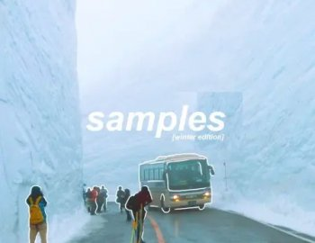 Splice Sounds Ramzoid Samples Winter Edition