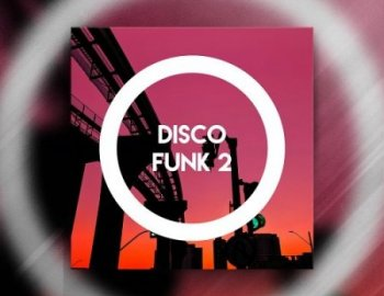 Constructed Sounds Disco Funk 2
