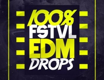 Mainroom Warehouse 100% FSTVL EDM Drops