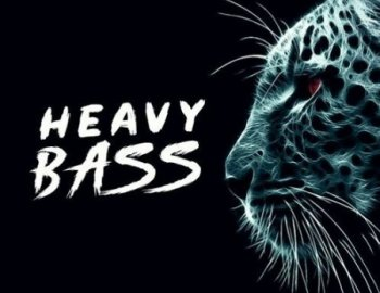 Function Loops Heavy Bass