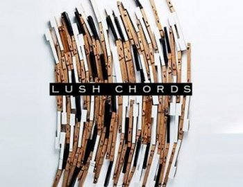 RawNois3 Lush Chords Sample Collection with Stems