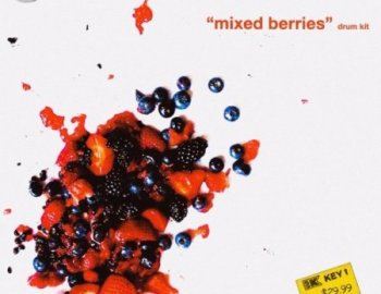 Treesound Mike Hector Mixed Berries Drum Kit