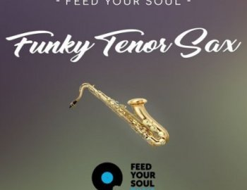 Feed Your Soul Music Feed Your Soul Funky Tenor Sax
