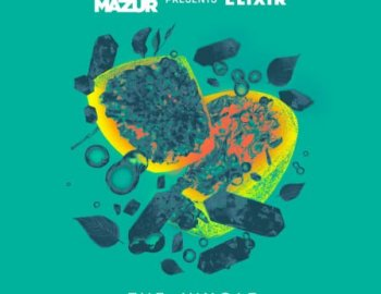 Splice Sounds Fabian Mazur The Jungle