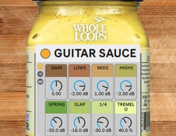 WHOLE LOOPS Ableton Guitar Sauce