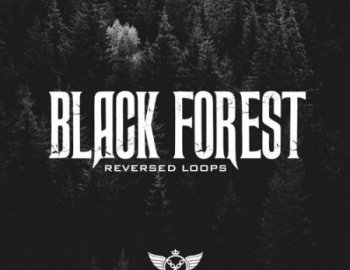 Studio Trap Black Forest