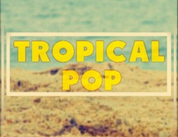 Out Of Your Shell Tropical Pop