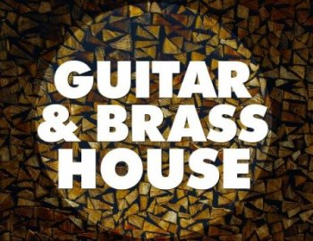 Big EDM - Guitar and Brass House