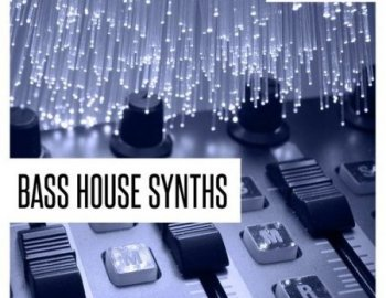 Concept Samples Bass House Synths