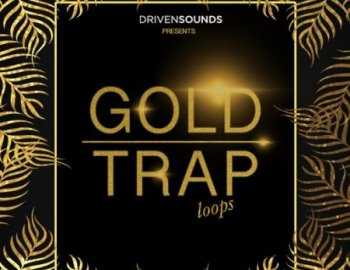 DRIVENSOUNDS Gold Trap Loops