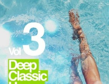 Producer Loops Deep Classic House Vol 3