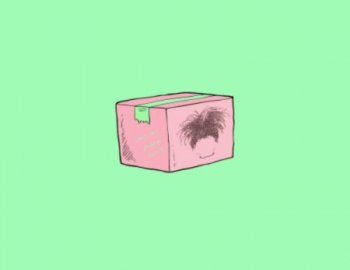 Splice Sounds - OSHI's Care Package Vol 2