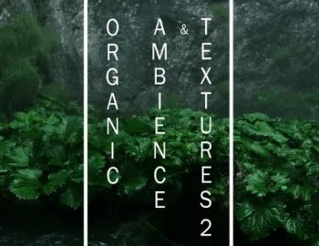 ShamanStems Organic Ambience and Textures 2
