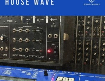 Sound Capsule House Wave