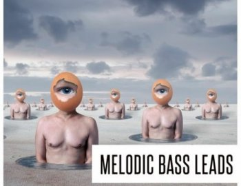 Concept Samples Melodic Bass Leads