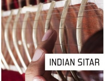 Pulsed Records World Series Indian Sitar