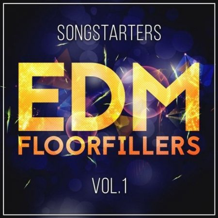 Mainroom Warehouse EDM Floorfillers Songstarters Vol 1