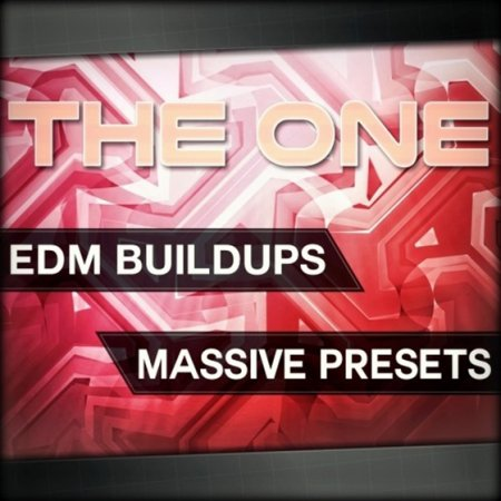 THE ONE EDM Buildups For Massive