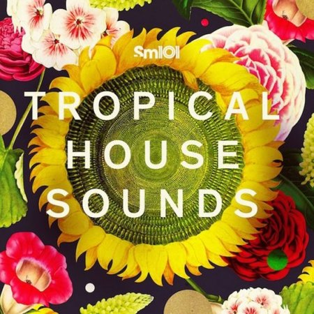 SM101 - Tropical House Patches