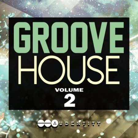 Audentity Groove House 2