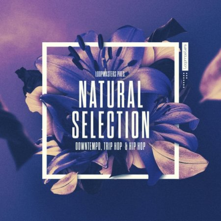Loopmasters Natural Selection (Ableton Live)