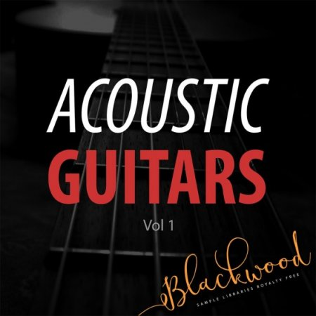Сэмплы BLACKWOOD Samples Acoustic Guitars