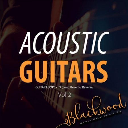 BLACKWOOD Samples Acoustic Guitars Vol 2