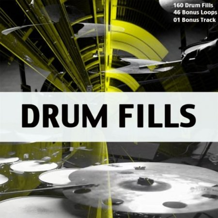 Chop Shop Samples Drum Fills
