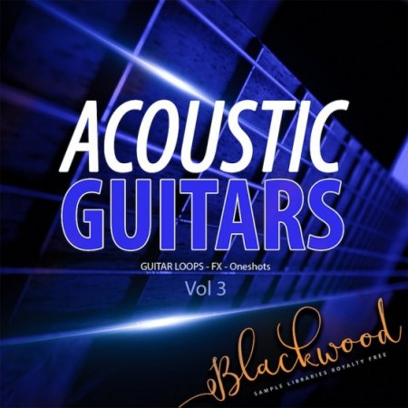 Blackwood Samples Acoustic Guitars 3