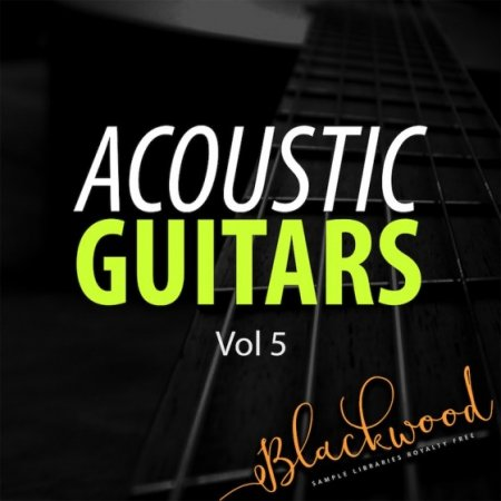 Blackwood Samples Acoustic Guitars 5