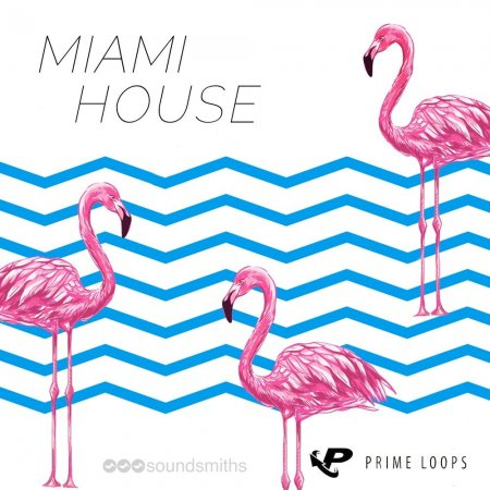 Prime Loops - Miami House