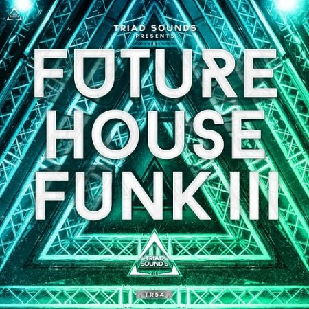 Triad Sounds Future House Funk III