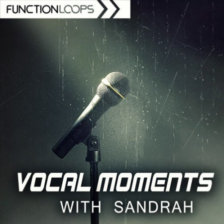 Function Loops Vocal Moments with Sandrah