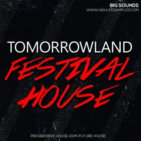 Big Sounds Tomorrowland Festival House