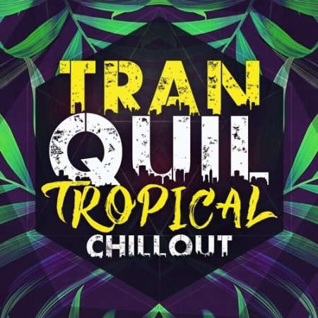 Immense Sounds Tranquil Tropical Chillout