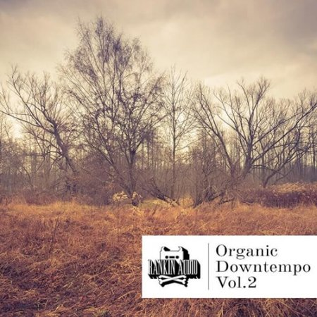 Rankin Audio Organic Downtempo Vol. 2