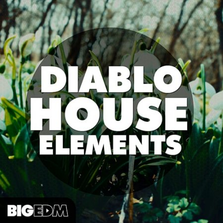 WA Production Diablo House Elements
