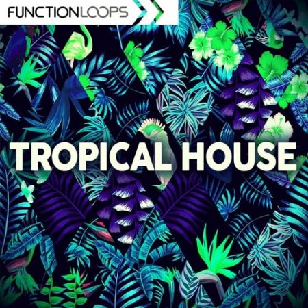 Function Loops Tropical House