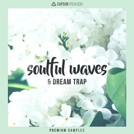 CAPSUN ProAudio Soulful Waves and Dream Trap