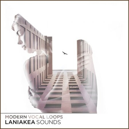 Laniakea Sounds Modern Vocal Loops