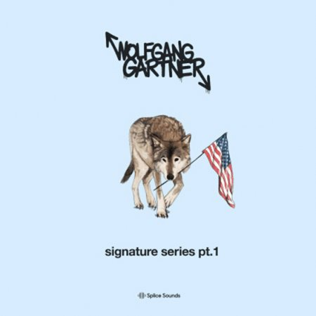 Splice Sounds Wolfgang Gartner Signature Series Pt 1