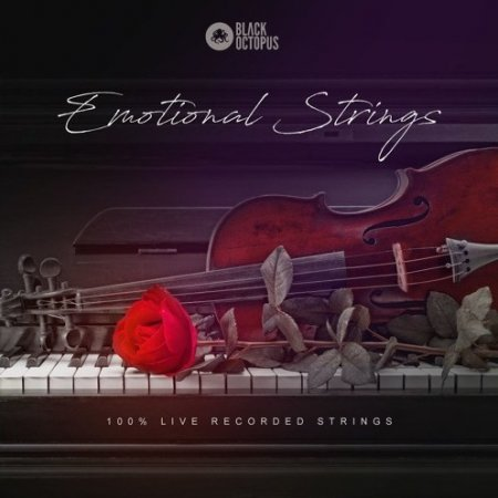 Black Octopus Sound Emotional Strings