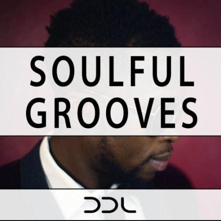 Deep Data Loops Soulful Grooves