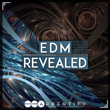 Killer Tone EDM Revealed