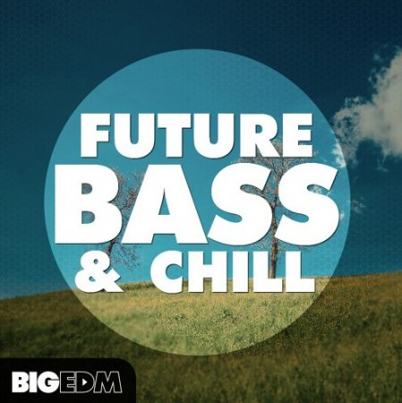 Big EDM Future Bass And Chill