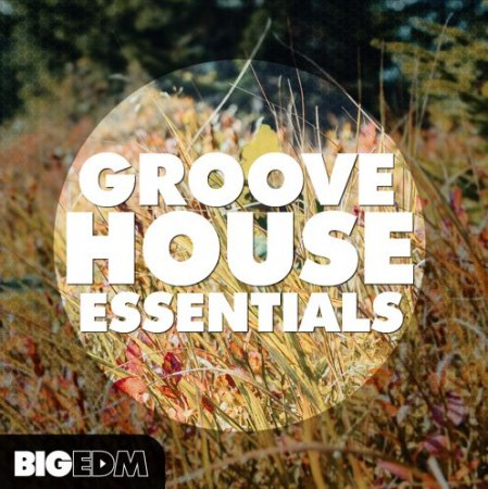 Big EDM Groove House Essentials