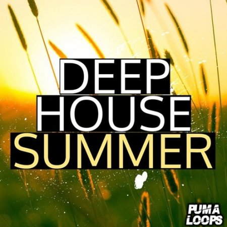 PUMA Loops Deep House Summer