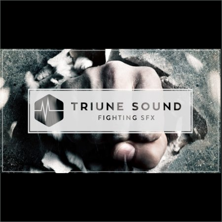 Triune Store Triune Sound Fighting SFX