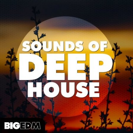 Big EDM Sounds Of Deep House