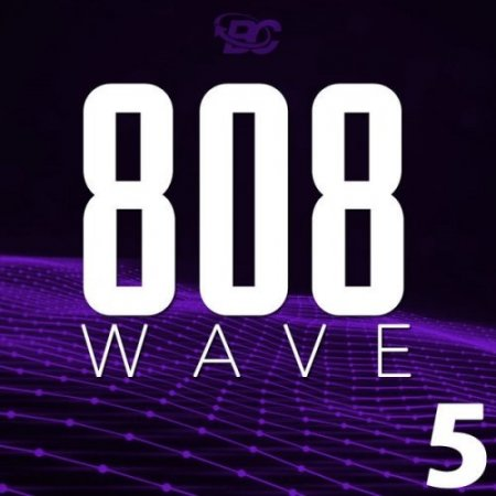 Big Citi Loops 808 Wave 5